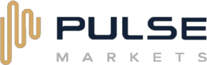 BIR Financial Limited - Pulse Markets logo